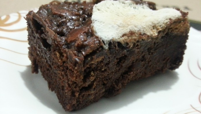 Glamma Momma's Oven: S'mores Brownies